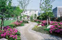 庭園散歩道